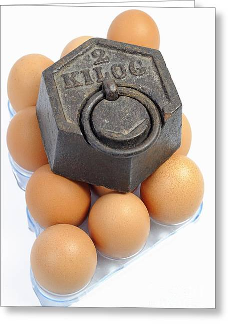 Two Kilos Weight On Eggs Greeting Card by Sami Sarkis