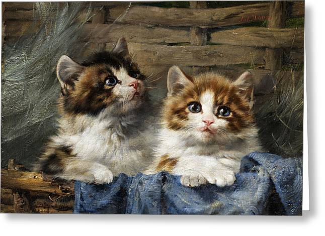 Cat With A Basket Greeting Cards - Two kittens in a basket with blue cloth Greeting Card by Julius Adam