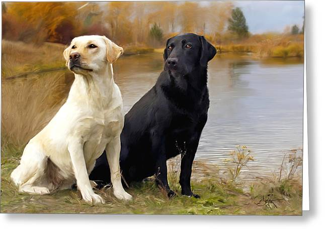 Labrador Greeting Cards - Two Labs Greeting Card by Robert Smith