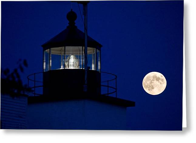 Stockton Greeting Cards - Two Lights in the Dark Greeting Card by Barbara West