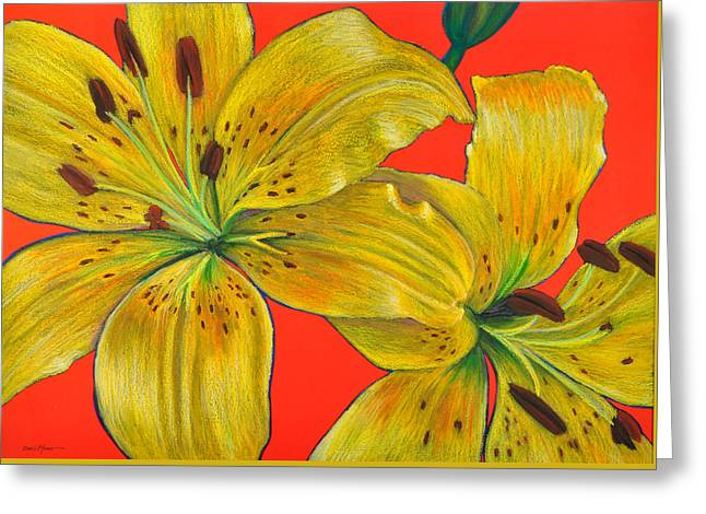 Day Lilly Paintings Greeting Cards - Two Lillies by Daniel Adams Greeting Card by Daniel  Adams