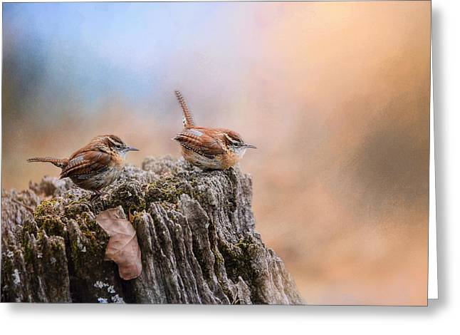 Wren Greeting Cards - Two Little Wrens Greeting Card by Jai Johnson