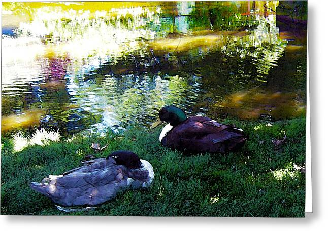 Cabin Corner Greeting Cards - Two Mallard Ducks Feng Shui Love Greeting Card by Michele  Avanti