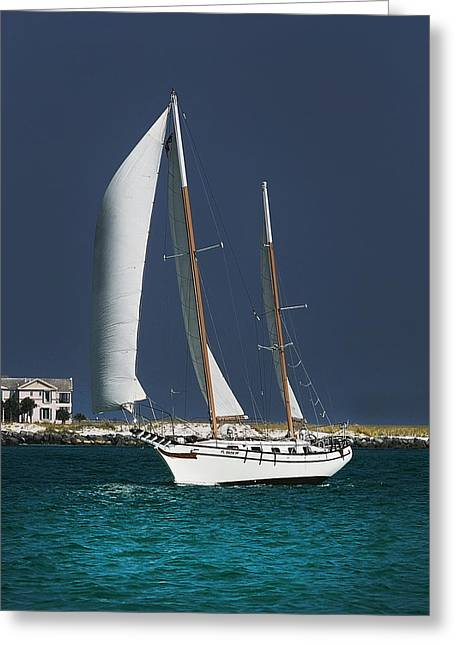 Two Sail Boats Greeting Cards - Two Masted Destin  Greeting Card by Joel P Black