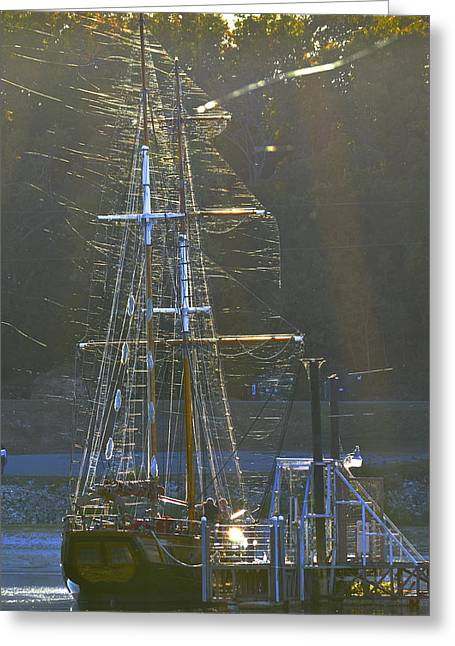 Wooden Ship Greeting Cards - Two Masted Web Catcher  Greeting Card by Mike Hinton