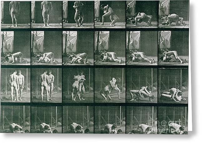 Grapple Greeting Cards - Two Men Wrestling Greeting Card by Eadweard Muybridge