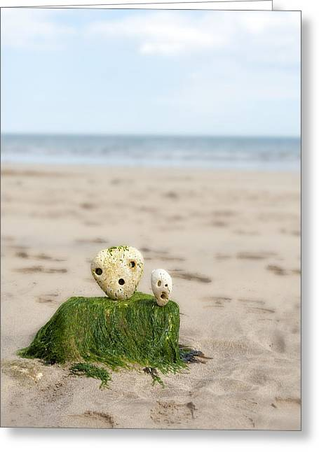 Two On A Beach Greeting Card by Svetlana Sewell