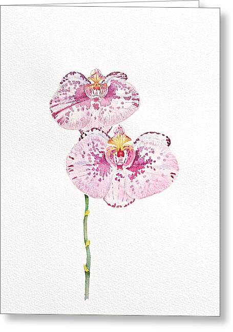 Two Orchids Greeting Card by Michele Myers