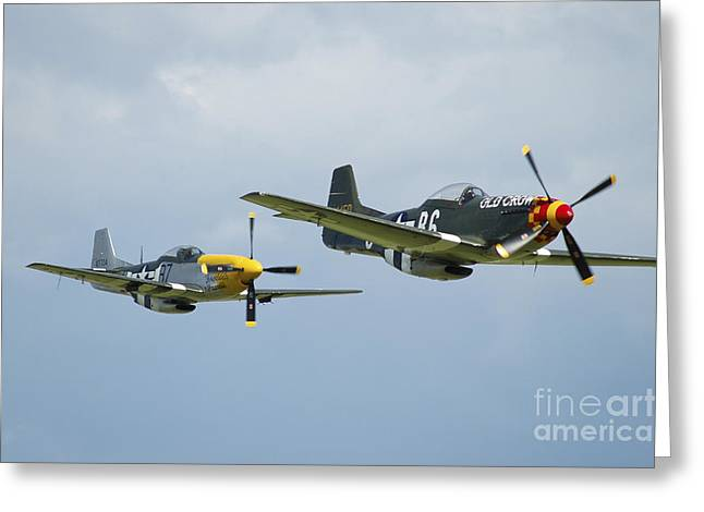 U.s. Army Air Corps Greeting Cards - Two P-51d Mustangs In United States Greeting Card by Riccardo Niccoli