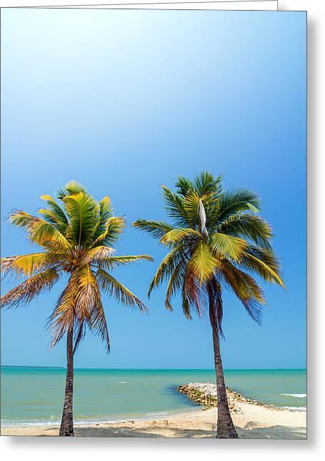 Playa Blanca Greeting Cards - Two Palms Greeting Card by Jess Kraft