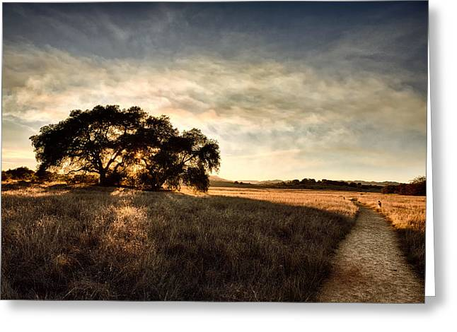 Prarie Greeting Cards - Two Paths Greeting Card by Peter Tellone