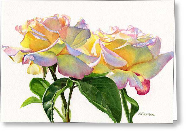 Watercolour Art Greeting Cards - Two Peace Roses Greeting Card by Sharon Freeman