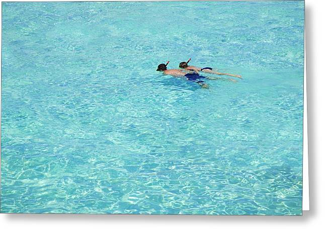 Special Occasion Greeting Cards - Two People Snorkeling Greeting Card by Don Hammond