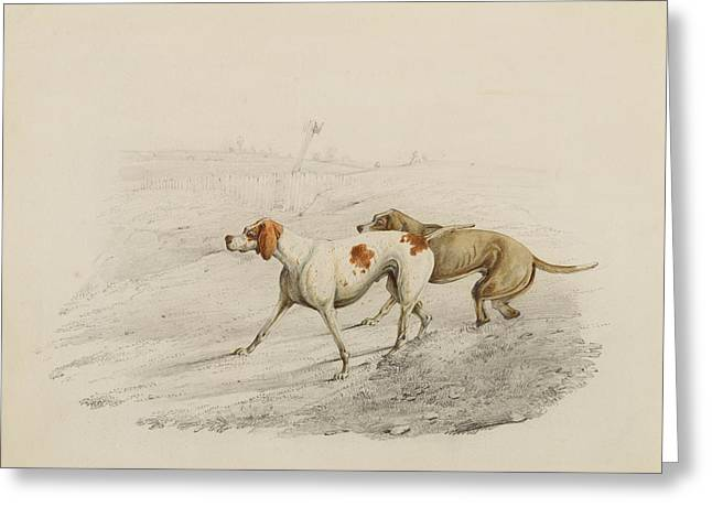 Hound Drawings Greeting Cards - Two Pointers Greeting Card by Henry Thomas Alken