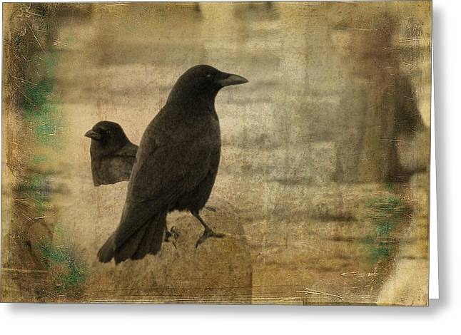 Crow Image Greeting Cards - Two Ponits Of View Greeting Card by Gothicolors Donna Snyder