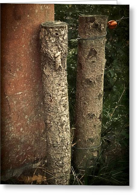 Old Fence Posts Greeting Cards - Two Poster Greeting Card by Odd Jeppesen