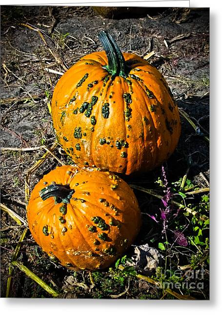 Decor Photography Greeting Cards - Two Pumpkins Greeting Card by Colleen Kammerer