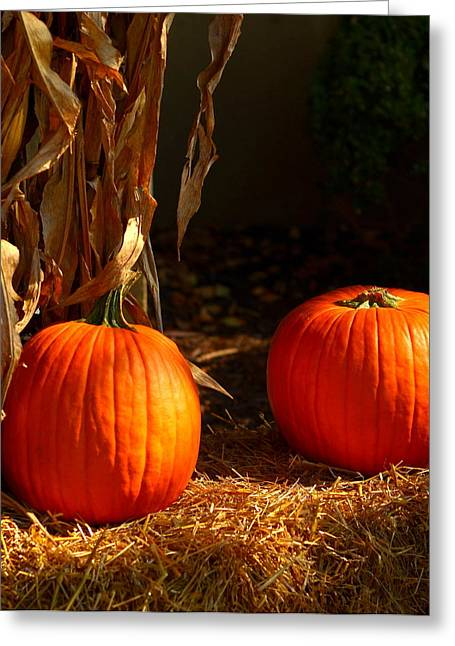 Fallscape Greeting Cards - Two Pumpkins Greeting Card by Yvette Radcliffe