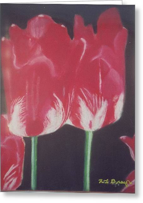 Robert Bray Greeting Cards - Two Red Tulips Greeting Card by Robert Bray