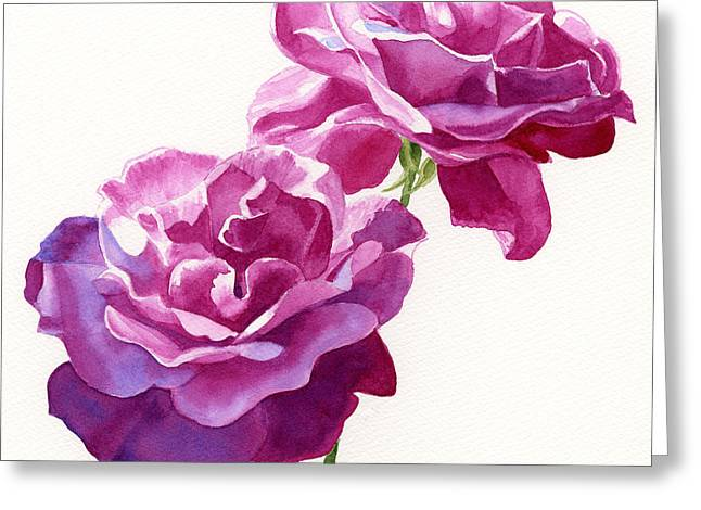 Roses Greeting Cards - Two Red Violet Rose Blossoms Square Design Greeting Card by Sharon Freeman