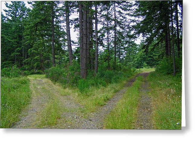 Division Greeting Cards - Two Roads Diverge Greeting Card by Roger Reeves  and Terrie Heslop