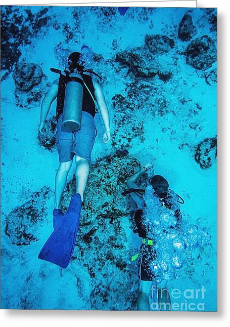 55-59 Years Greeting Cards - Two scuba divers swimming_ Cozumel, Mexico Greeting Card by Mike Raabe