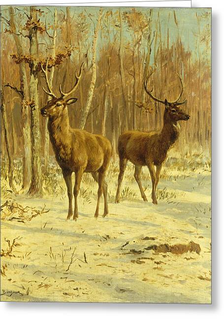 Wintry Greeting Cards - Two Stags in a Clearing in Winter Greeting Card by Rosa Bonheur