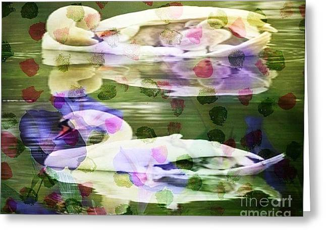 Photo Art Gallery Paintings Greeting Cards - Two Swans Art Greeting Card by PainterArtist FIN and Maestro