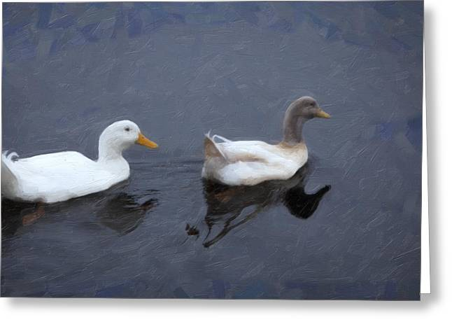 Youthful Greeting Cards - Two Ducks in a Pond Greeting Card by David Millenheft