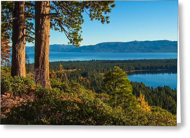 Fallen Leaf Greeting Cards - Two Trees Above Two Lakes Greeting Card by Marc Crumpler
