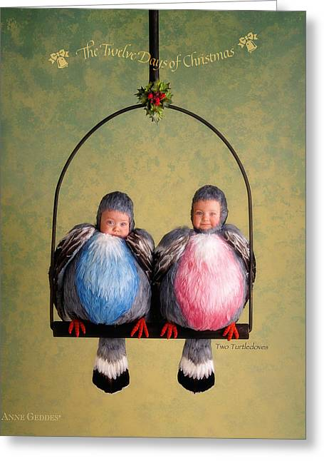 12 Days Of Christmas Greeting Cards - Two Turtle Doves Greeting Card by Anne Geddes