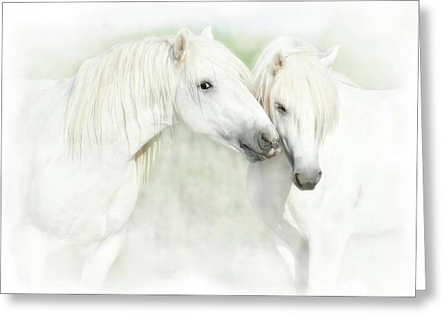 Two White Horses Of Camargue, French Greeting Card by Sheila Haddad