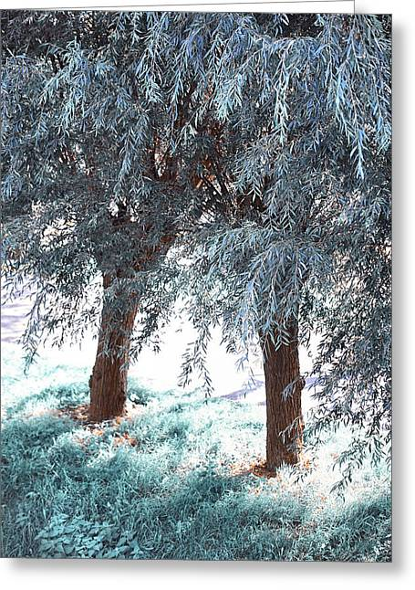 Healing Journey Greeting Cards - Two Willows Greeting Card by Jenny Rainbow