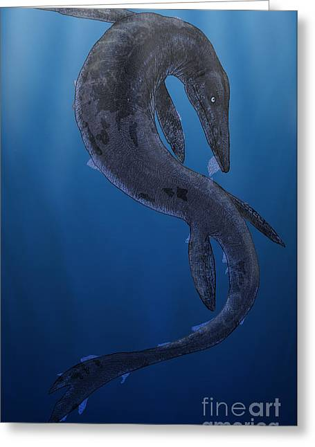 Shed Digital Greeting Cards - Tylosaurus, A Giant Marine Squamata Greeting Card by Vitor Silva
