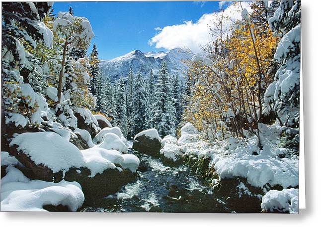Tyndall Creek Greeting Card by Eric Glaser