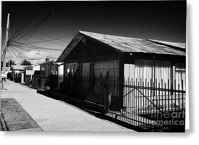 Tin Roof Greeting Cards - typical chilean construction house with metal tin roof las naciones Punta Arenas Chile Greeting Card by Joe Fox