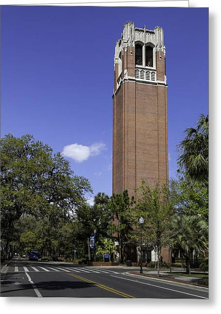 Lynn Palmer Studios Greeting Cards - UF Century Tower and Newell Drive Greeting Card by Lynn Palmer