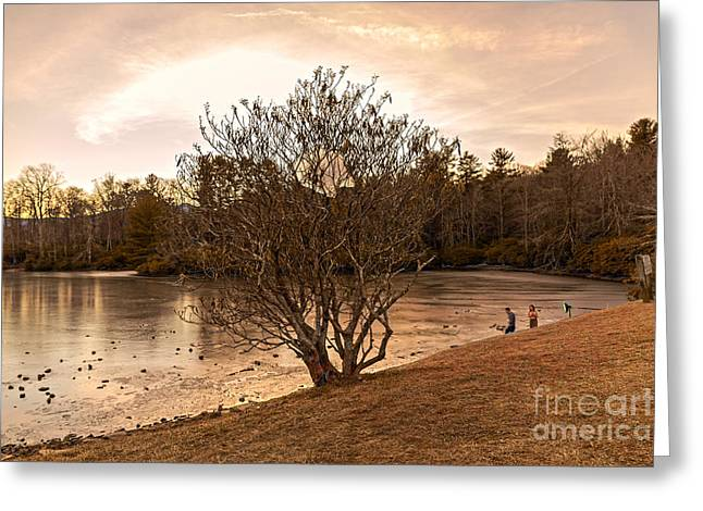 Intergalactic Space Greeting Cards - UFO over Price Lake Greeting Card by Robert Loe