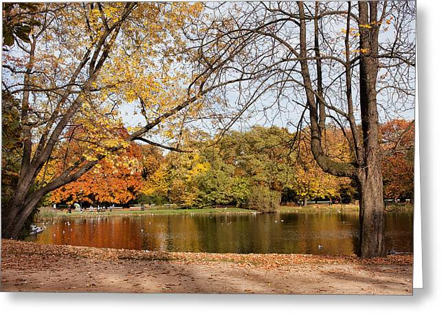 Nature Center Pond Greeting Cards - Ujazdowski Park in Warsaw Greeting Card by Artur Bogacki