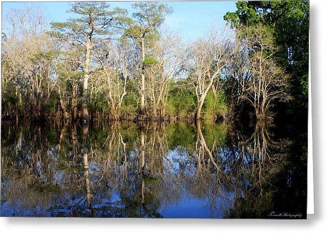 Reflections Of Trees In River Greeting Cards - Ultimate Reflection Greeting Card by Debra Forand