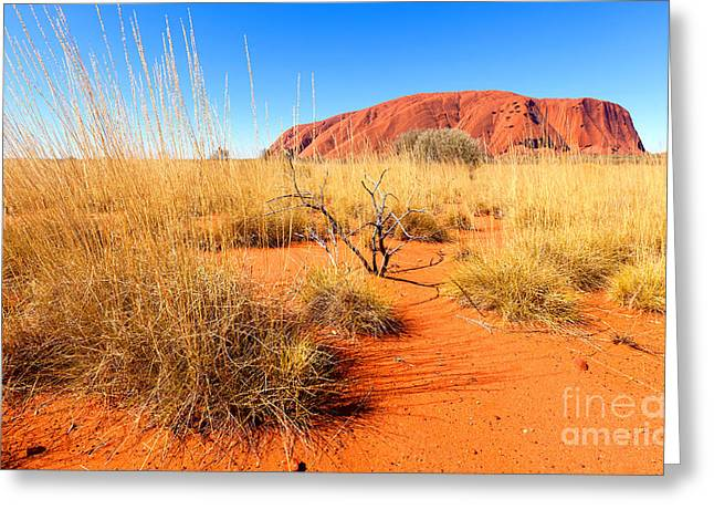 Ayers Rock Greeting Cards - Central Australia Greeting Card by Bill  Robinson