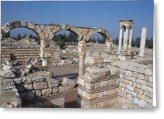 Ancient Ruins Greeting Cards - Umayyad Ruins, Lebanon Greeting Card by Catherine Ursillo