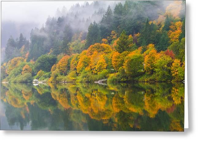 Umpqua River Greeting Cards - Umpqua Serenity Greeting Card by Patricia  Davidson