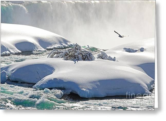 Horseshoe Falls Greeting Cards - Unafraid Greeting Card by Charline Xia