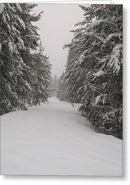 Jewel Hengen Greeting Cards - Unbroken Trail Greeting Card by Jewel Hengen