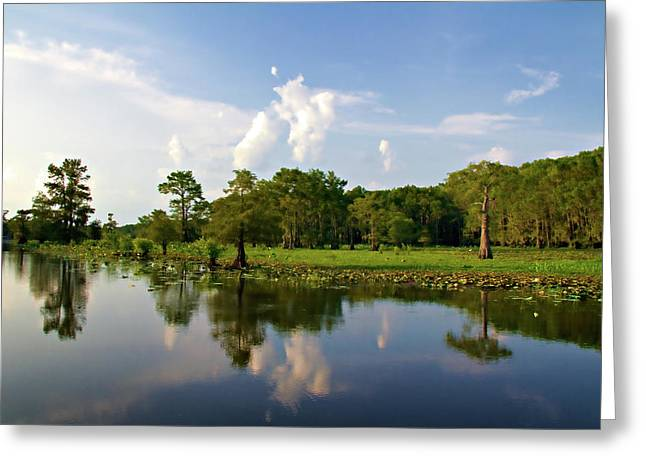 Caddo Lake Greeting Cards - Uncertain Reflection Greeting Card by Lana Trussell