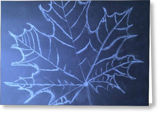 Uncertaintys Leaf Greeting Card by Jason Padgett