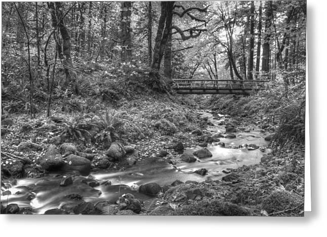 White River Scene Photographs Greeting Cards - Uncolored Greeting Card by Jean Noren