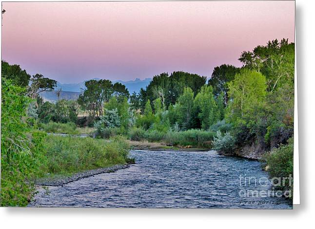 Colorado Mountain Posters Greeting Cards - Uncompahgre Mountains Shine on The River Greeting Card by Janice Rae Pariza