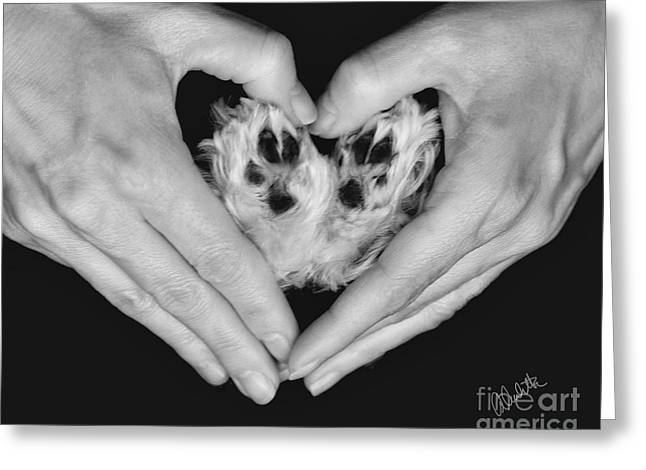 Girl And Animals Framed Prints Greeting Cards - Unconditional Love Greeting Card by Andrea Auletta